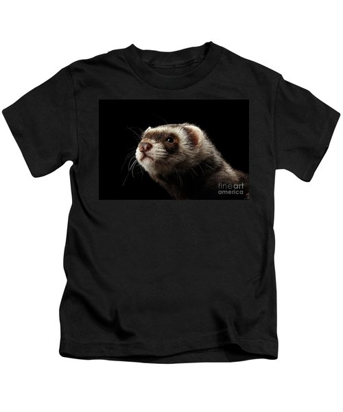 Closeup Portrait Of Funny Ferret Looking At The Camera Isolated On Black Background, Front View Kids T-Shirt