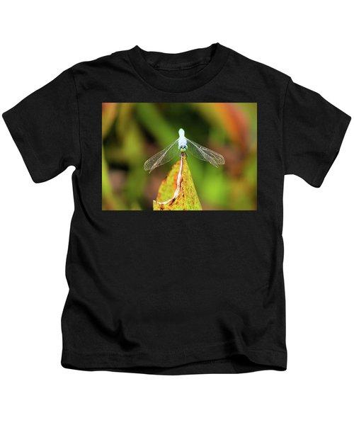 Clown Face Dragonfly Kids T-Shirt