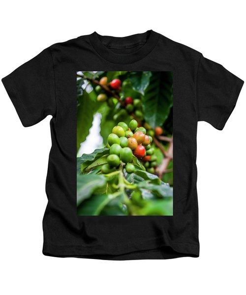 Coffee Plant Kids T-Shirt