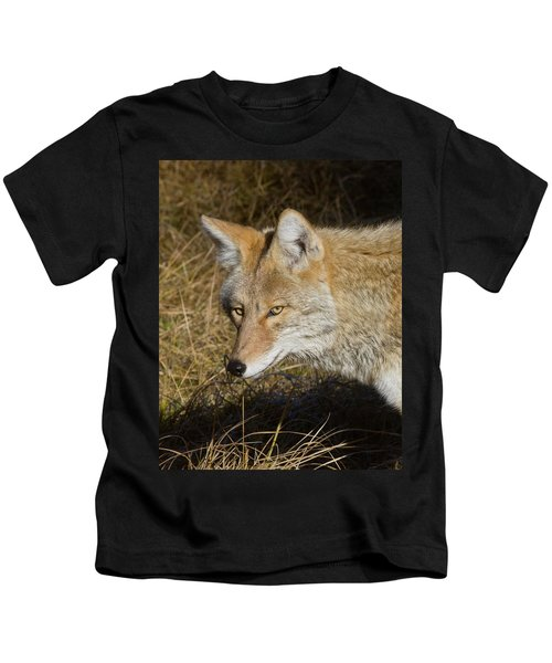 Coyote In The Wild Kids T-Shirt