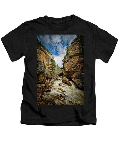 Crazy Woman Canyon Kids T-Shirt