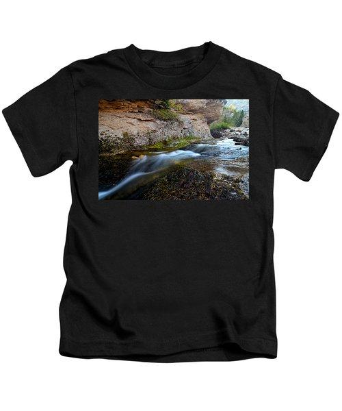 Crazy Woman Creek Kids T-Shirt