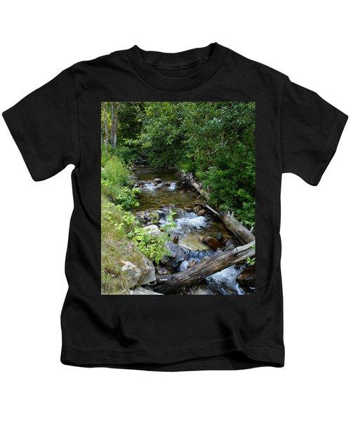 Creek On Mt. Spokane 1 Kids T-Shirt