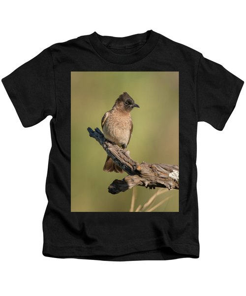Dark-capped Bulbul Kids T-Shirt