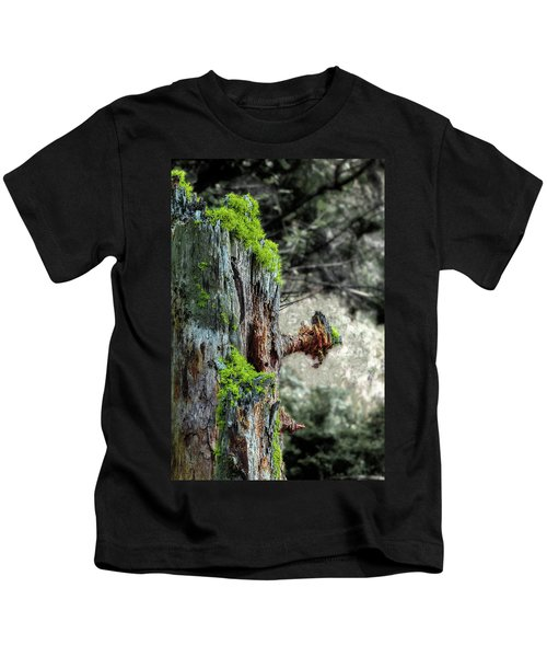 Death And Life Along The Path Kids T-Shirt