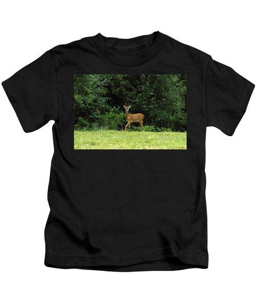 Deer In The Woods Kids T-Shirt