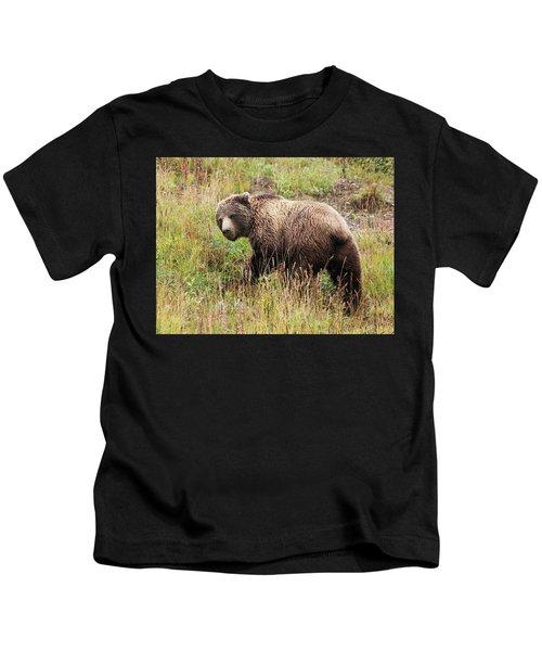 Denali Grizzly Kids T-Shirt