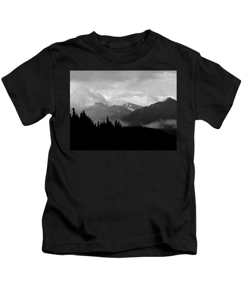Denali National Park 1  Kids T-Shirt