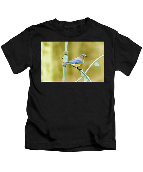 Eastern Bluebird Kids T-Shirt