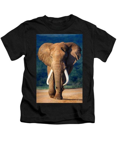 Elephant Approaching Kids T-Shirt