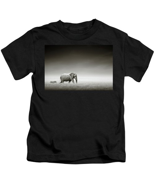 Elephant With Zebra Kids T-Shirt