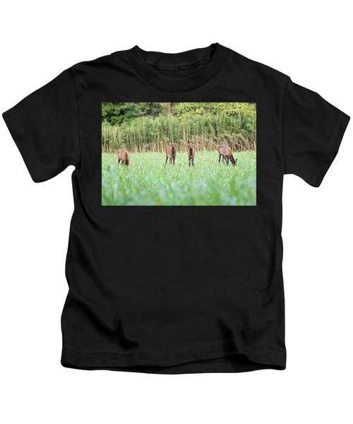 Elk Calves Kids T-Shirt
