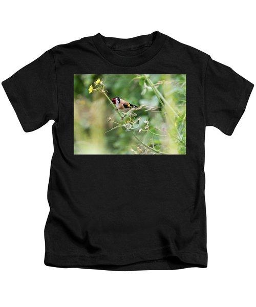 European Goldfinch Perched On Flower Stem B Kids T-Shirt