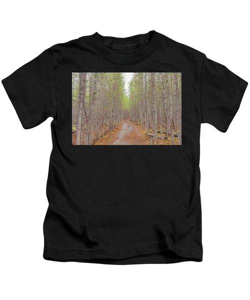 Fall Aspen Trail  Kids T-Shirt