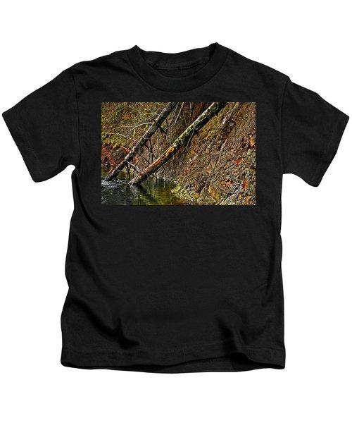 Fallen Friends 2 Kids T-Shirt