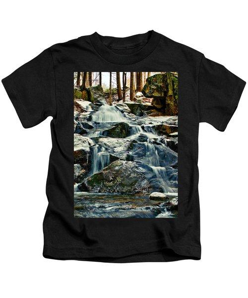 Falls Of Fogg Brook Kids T-Shirt