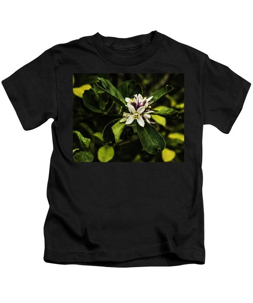 Flower Of The Lemon Tree Kids T-Shirt
