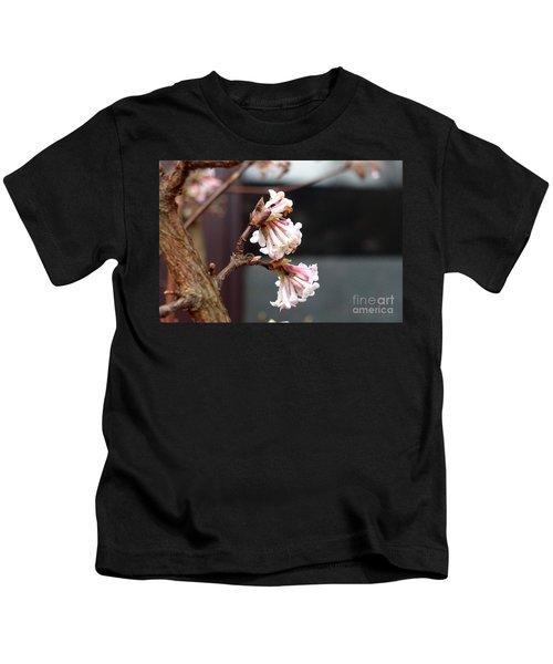 Flowering In December Kids T-Shirt