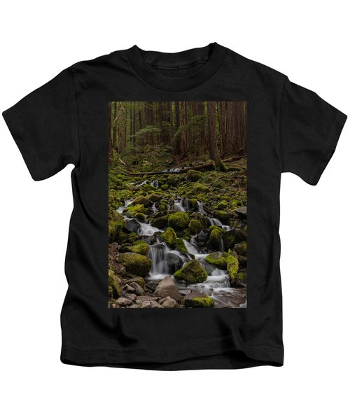 Forest Cathederal Kids T-Shirt by Mike Reid