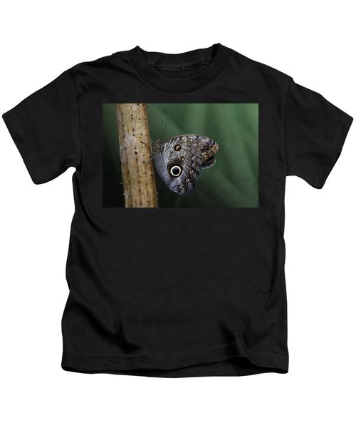 Giant Owl Butterfly On Screw Pine Kids T-Shirt