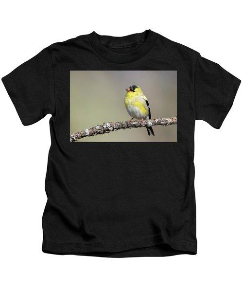 Gold Finch Kids T-Shirt