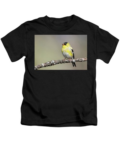 Gold Finch Kids T-Shirt