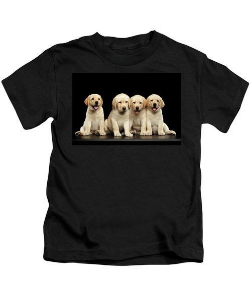 Golden Labrador Retriever Puppies Isolated On Black Background Kids T-Shirt
