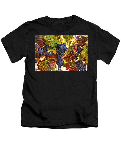 Grapes On Vine In Vineyards Kids T-Shirt