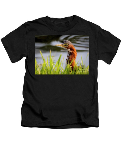Green Heron Closeup  Kids T-Shirt