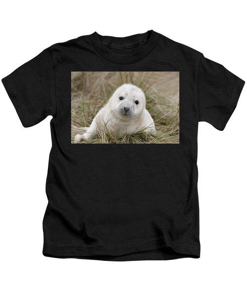 Grey Seal Pup Kids T-Shirt