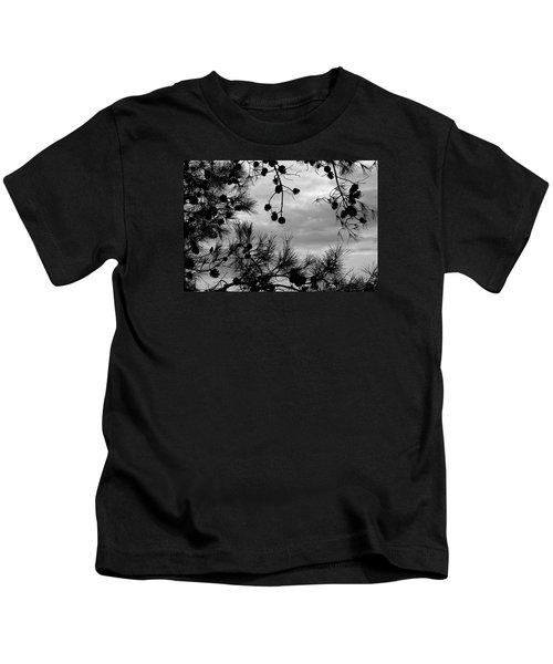 Hanging Pine Cones Kids T-Shirt