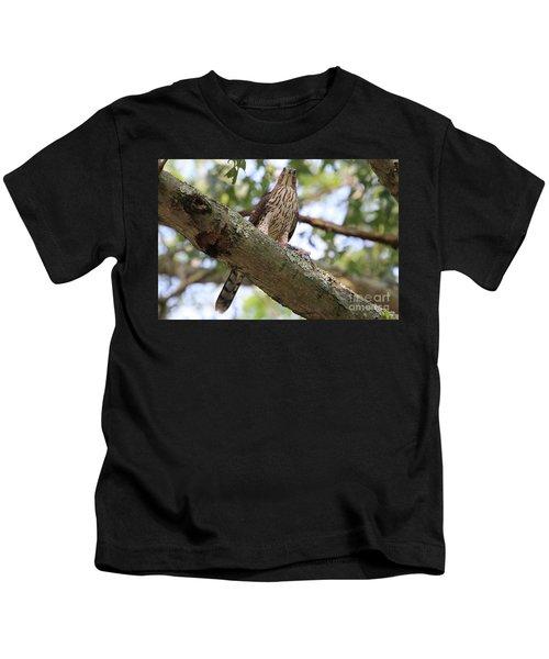 Hawk On A Branch Kids T-Shirt