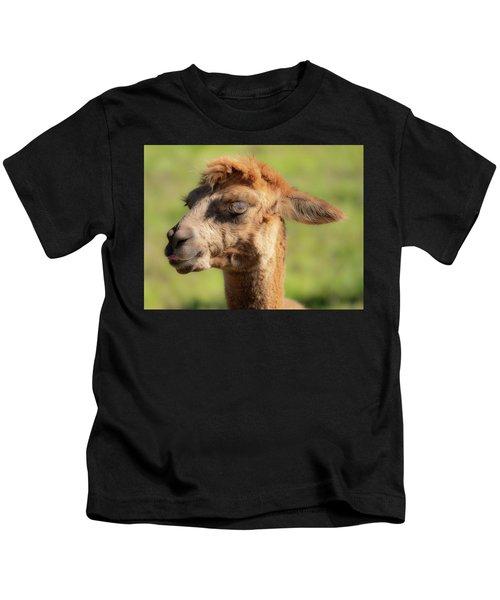 Hello Darling Kids T-Shirt