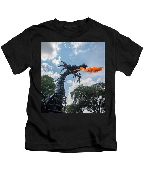 Here There Be Dragons Kids T-Shirt