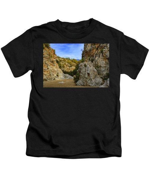 Honey Bee Canyon H50 Kids T-Shirt