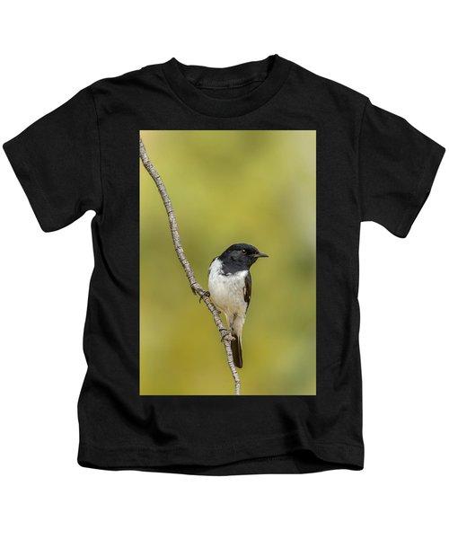Hooded Robin Kids T-Shirt