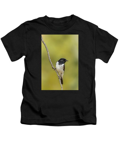 Hooded Robin Kids T-Shirt