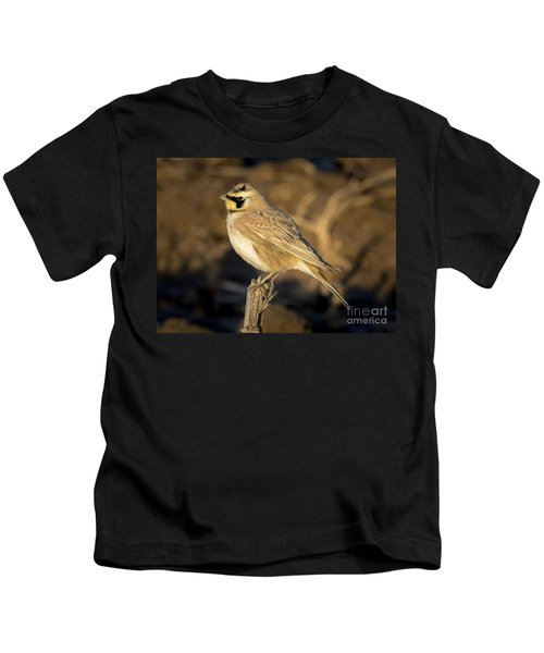 Horned Lark Kids T-Shirt