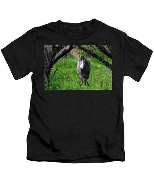 Horse's Arch Kids T-Shirt