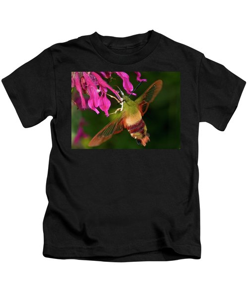 Hummingbird Moth Kids T-Shirt