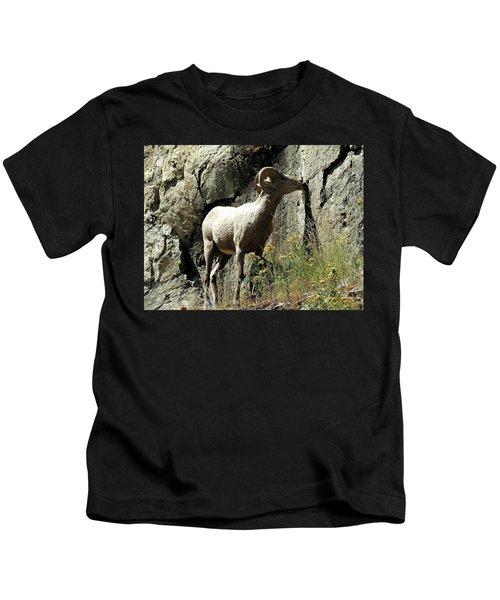 Irish Ram Kids T-Shirt