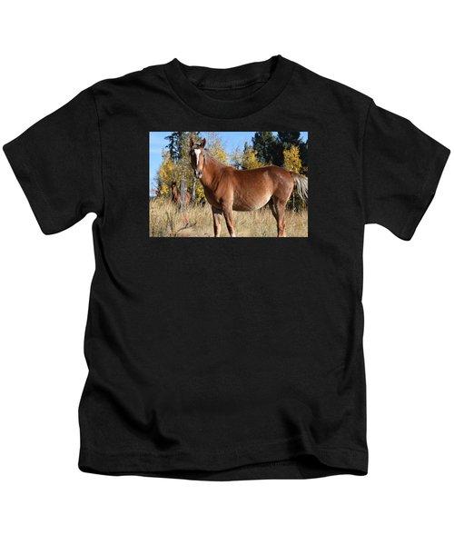 Horse Cr 511 Divide Co Kids T-Shirt