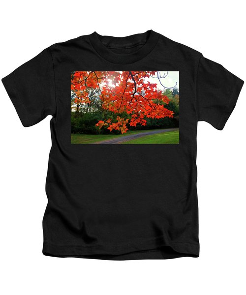 Knox Park 8444 Kids T-Shirt