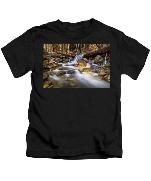 Log Falls On Limekiln Creek Kids T-Shirt