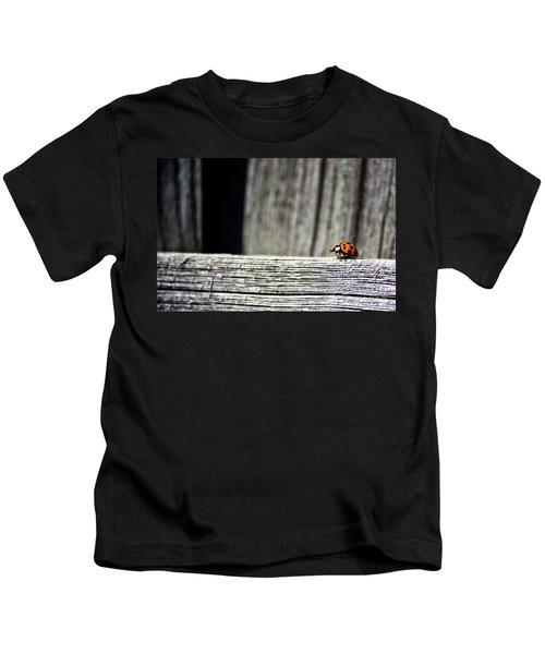 Lonely Ladybug Kids T-Shirt