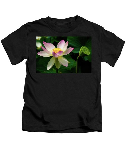 Lotus Lily In Its Final Days Kids T-Shirt