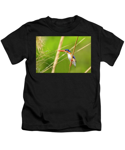 Malachite Kingfisher Kids T-Shirt
