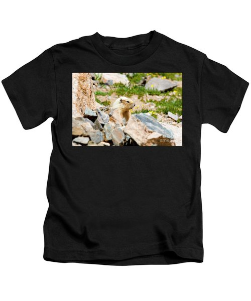 Marmot On Mount Massive Colorado Kids T-Shirt
