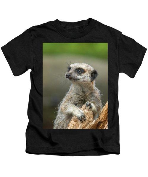 Meerkat Model Kids T-Shirt