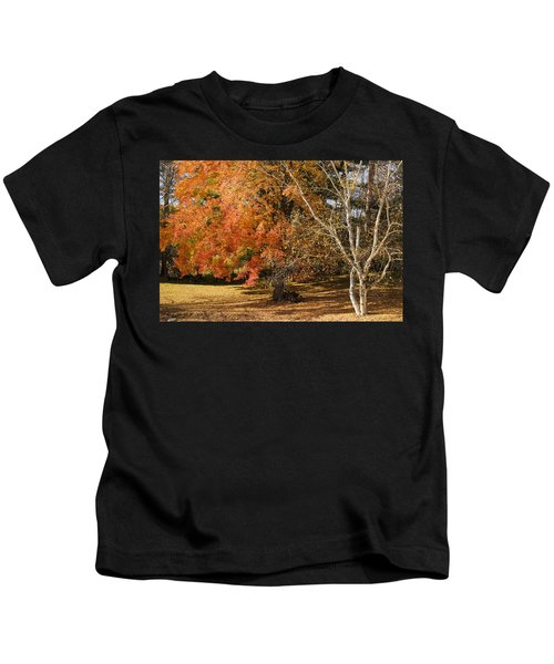 Michigan Autumn 1 Kids T-Shirt